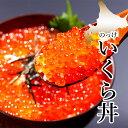 自宅用 いくら醤油漬け(60g)【北海道 いくら 自宅用 い...
