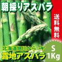 送料無料 北海道産 グリーンアスパラ(Sサイズ 1kg)【ア...