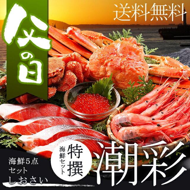 父の日 海鮮 ギフト送料無料 特撰 海鮮セット 潮彩(しおさい)(5品セット)【父の日ギフ…...:hokkaido-gourmation:10041745