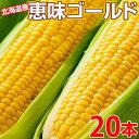 【8月中旬発送予定】笹崎さんちの『恵味(めぐみ)ゴールド【20本入り】』北海道・江