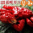 花咲ガニ1.1kg×3尾 紅鮭切身2切1パック付 かに カニ 蟹 北海道産 花咲蟹は根室特産の蟹 根...
