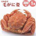 【母の日ギフト】 北海道産毛ガニ300g×1尾 紅鮭切身2切...