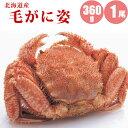 【母の日ギフト】 北海道産毛ガニ360g×1尾 イクラ醤油漬...