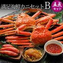 満足海鮮カニセットB(ズワイガニ2尾+海鮮3種)送料込み 蟹...