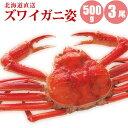 【かに カニ 蟹】 ズワイガニ姿500g×3尾 送料無料すっ...
