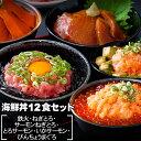 海鮮丼 12食セット(マグロ漬け2p・ネギトロ2P+サーモンネギトロ2p+トロサーモン2p+びんちょ