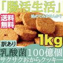 【訳あり】サクサク乳酸菌おからクッキー1kg/腸内フローラを整え、毎日腸活生活!!乳酸菌100億個/おから/詰合せ/詰め合せ/詰め合わせ/クッキー/焼き菓子/洋菓子 送料無料 /常温便