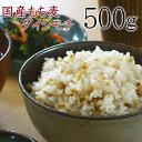 国産もち麦 500g ダイシモチ 訳あり 簡易包装 大麦 米