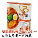 曼荼羅札幌スープカレー とろとろポーク角煮