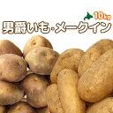 [2020年秋収穫 じゃがいもセット] 北海道真狩産「男爵いも」「メークイン」 計10kg!!ジャガイモ
