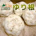 【2018年収穫ユリ根4kg】北海道真狩産「ゆり根」2kg×...