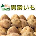 [2018年秋収穫 男爵いも 10kg] 北海道真狩産じゃがいも「男爵いも」10kg!!ジャガイモ