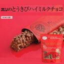 ホリ HORI とうきびハイミルクチョコ 10本入 ポイント消化 北海道 お取り寄せ お菓子 お土産