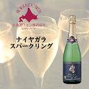 楽天北海道新発見ファクトリーおたるワイン ナイヤガラ スパークリング 720ml 北海道 お取り寄せ お土産 お酒
