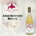 北海道ワイン おたるワイン うめワイン 720ml 北海道 お取り寄せ お土産 お酒