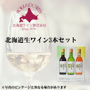 北海道ワイン おたるワイン 北海道生ワイン 3本飲み比べセット 180ml×3お土産 お酒 北海道