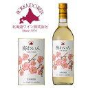 北海道ワイン おたる 梅わいん 720ml ラッピング対応可
