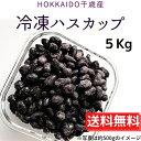 期間限定半額!北海道千歳産 【冷凍ハスカップ】 5Kg 冷凍...