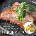 【直送】(送料無料)極上 無添加 ベーコンブロック 800g北海道赤井川コロポックル村 長
