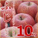 (送料無料)余市町産地直送 りんご【ふじ】10kg 有機質肥料使用 北海道産 余市産 リンゴ 林檎 赤りんご フジ ギフト 贈答品