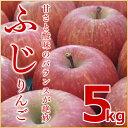 (送料無料)北海道余市産地直送 りんご【ふじ】5kg有機質肥料使用 北海道産 余市産 リンゴ 林檎 赤りんご フジ ギフト 贈答品