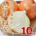北海道 蘭越産【たまねぎ】10kg (MLサイズ)※送料無料...