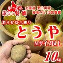 【希少品種】【訳あり】新じゃがいも「とうや」10kg 北海道栗山町 「湯地の丘自然農園