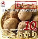 【北海道ニセコ産】新ジャガイモ「きたあかり」10kg LMサイズ正規品※送料無料【九州・