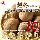 【北海道ニセコ産】越冬ジャガイモきたあかり 10kg LMサイズ 正規品※送料無料【九州・