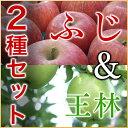(送料無料)北海道余市産地直送 りんご【ふじ&王林】5kgセット有機質肥料使用 北海道産 余市産 リンゴ 林檎 セット フジ ギフト 贈答品