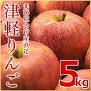 (送料無料)北海道余市産直 りんご【つがる】5kg 有機質肥料使用 産地直送 津軽 北海道産 余市産 リンゴ 林檎葉とらずリンゴ ギフト 贈答品
