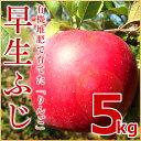 北海道 余市産 りんご【早生ふじ】5kg有機質肥料使用 産地...