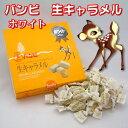 北海道小樽生まれの バンビ 生キャラメル ホワイト 10個セット