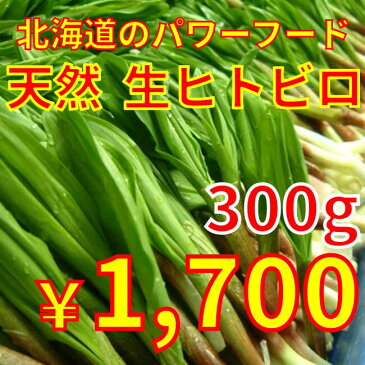 生ヒトビロ(行者にんにく)300g お届けは4月上旬〜下旬!