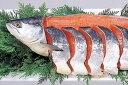 根室産 北洋紅鮭 中塩 2.0kg位