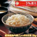 令和元年産 新潟産こしいぶき 5kg 玄米 【送料無料】食味...