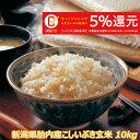 令和元年産 新米 新潟産こしいぶき 10kg 玄米 送料込み 食味Aランク (ほぼ 無農薬) 一