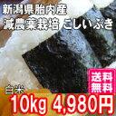新米 29年産 新潟産こしいぶき 10kg 白米 送料無料 食味Aランク (ほぼ 無農薬) 一等級