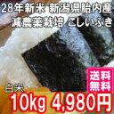 新米 28年産 こしいぶき 10kg 白米 送料無料 新潟産 減農栽培(ほぼ 無農薬) 一等米 【白米 取り寄せ】