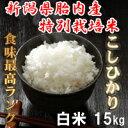 新米 29年産 新潟産特別栽培米 コシヒカリ白米 15kg (10kg+5kg) ほぼ無農薬  【こしひかり 白米 送料無料】 [一等級 ]