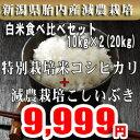 新米 29年産 特別栽培米コシヒカリ・こしいぶき白米セット10kg×2(20kg) 新潟産詰め合わせセット【白米 20kg 送料無料】ほぼ無農薬 一等米