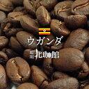 ウガンダ ブルーナイル 100g/コーヒー豆/ネコポス(メール便)全国一律送料200円【自家焙煎珈琲】