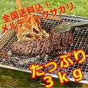 【100gあたり266.6円(税別)・たっぷりメガ盛り3000g!】【 業務用サガリブロック・ハラ