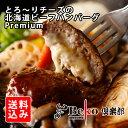 【1000円ポッキリ】とろ〜りチーズの北海道ビーフハンバーグPremium/2セット以上のお