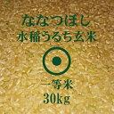 令和元年産 ななつぼし 玄米 30Kg 一等米 北海道米 特A