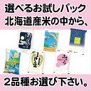令和元年産 北海道米 選べる お試しパック2種 3合パック×2袋 (450g×2袋) メール便送料無料 北海道米