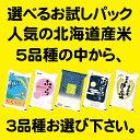 【新米】北海道産米 選べるお試しパック!3種(3合パック×3袋)【メール便送料無料】【平成28年産】【北海道米】