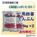 北海道産 ばれいしょでんぷん (5kg×2) 【送料無料】【片栗粉】【馬鈴薯澱粉】