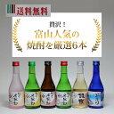 送料無料 富山の焼酎 飲み比べセット 米騒動、銀泉、早月川 300mL6本 焼酎 飲み