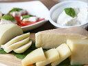 チーズ工房白糠酪恵舎のこだわりチーズ「5種セット」(送料込み)